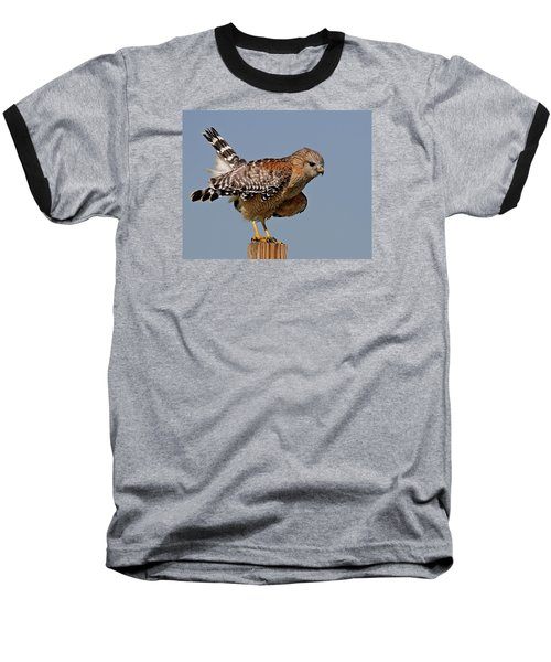 Red Shouldered Hawk Baseball T-Shirt