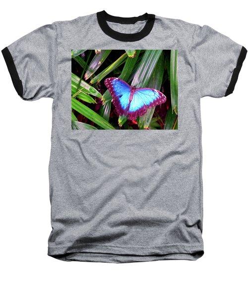 Blue Butterfly Baseball T-Shirt