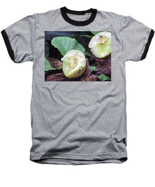 Butterfly Buffet Baseball T-Shirt