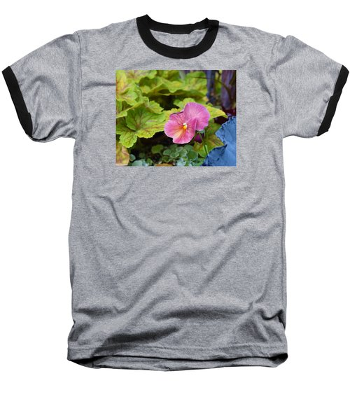 2015 After The Frost At The Garden Pansies 3 Baseball T-Shirt