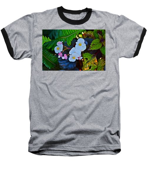 2015 Early September At The Garden Begonias Baseball T-Shirt