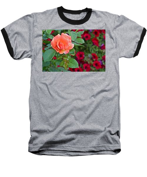 2015 Fall Equinox At The Garden Sunset Rose And Petunias Baseball T-Shirt
