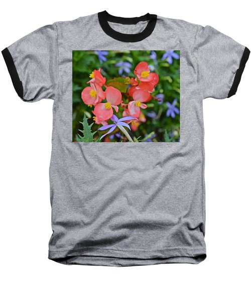 2015 Mid September At The Garden Begonias 2 Baseball T-Shirt