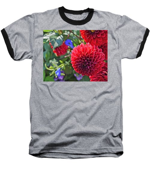2015 Mid September At The Garden Dahlias 2 Baseball T-Shirt