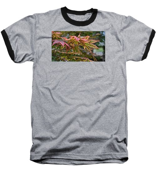 2015 Mid-september At The Garden Japanese Maple 1 Baseball T-Shirt
