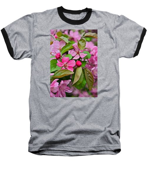 2015 Spring At The Gardens Pink Crabapple Blossoms 2 Baseball T-Shirt