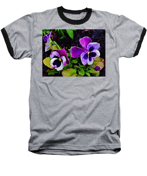 2015 Spring At Olbrich Gardens Violet Pansies Baseball T-Shirt