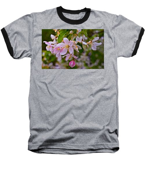 2015 Spring At The Gardens White Crabapple Blossoms 1 Baseball T-Shirt