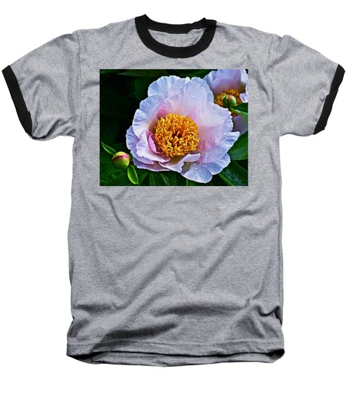 2015 Spring At The Garden White Peony  Baseball T-Shirt