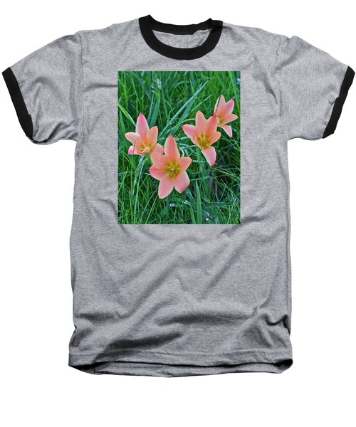 2015 Spring At The Gardens Meadow Garden Tulips 3 Baseball T-Shirt