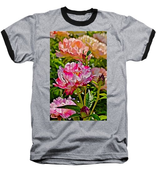 2015 Summer's Eve At The Garden Candy Stripe Peony Baseball T-Shirt