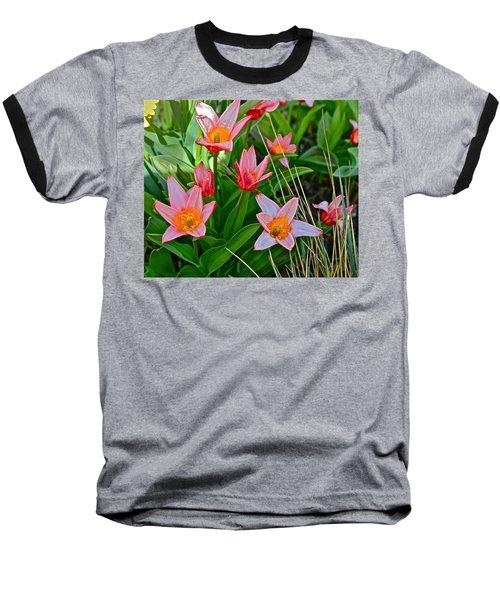 2016 Acewood Tulips 2 Baseball T-Shirt by Janis Nussbaum Senungetuk