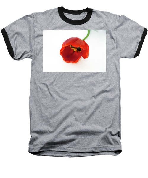 Red Tulip Baseball T-Shirt by Elvira Ladocki