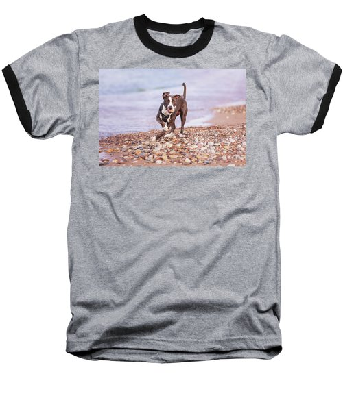 Baseball T-Shirt featuring the photograph American Pitbull Terrier by Peter Lakomy