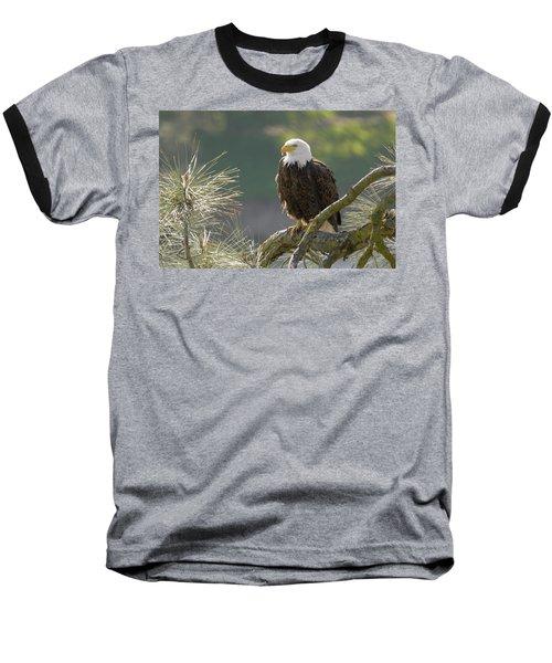 Baseball T-Shirt featuring the photograph Bald Eagle by Doug Herr