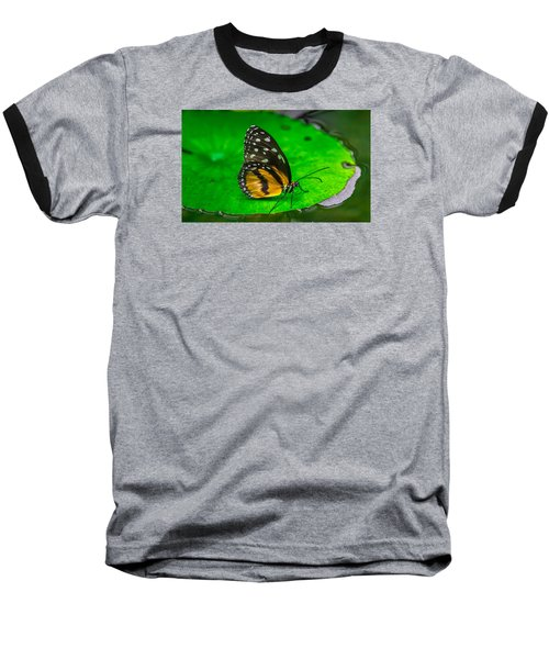 Butterfly Baseball T-Shirt by Jerry Cahill