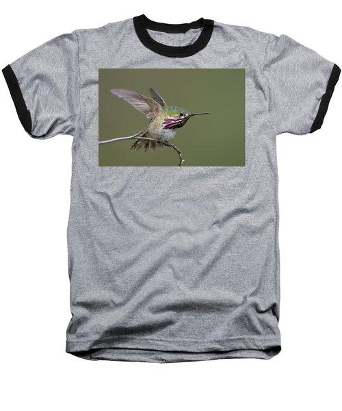 Calliope Hummingbird Baseball T-Shirt by Doug Herr