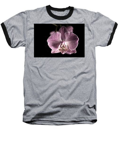 Close Up Shoot Of A Beautiful Orchid Blossom Baseball T-Shirt by Ulrich Schade