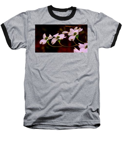 3 Dogwood Blooms On A Branch Baseball T-Shirt by John Harding