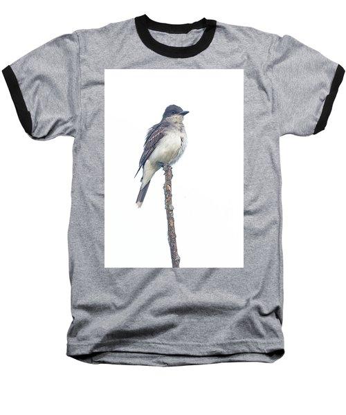 Eastern Kingbird Baseball T-Shirt