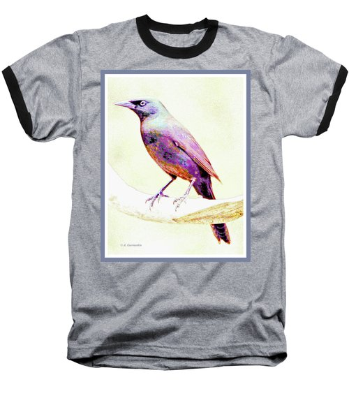 Great-tailed Grackle Baseball T-Shirt