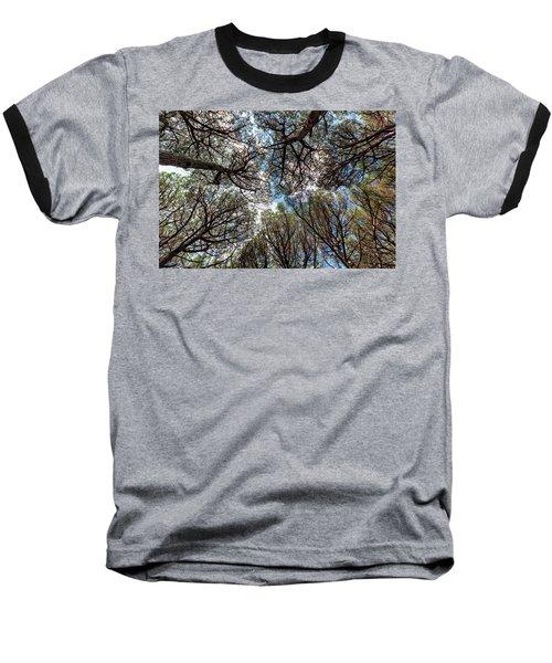 Pinewood Forest, Cecina, Tuscany, Italy Baseball T-Shirt