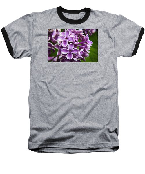 Pink Flowers Baseball T-Shirt by Andre Faubert