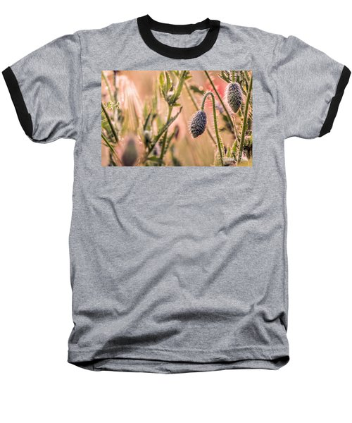 Poppy Flowers Baseball T-Shirt