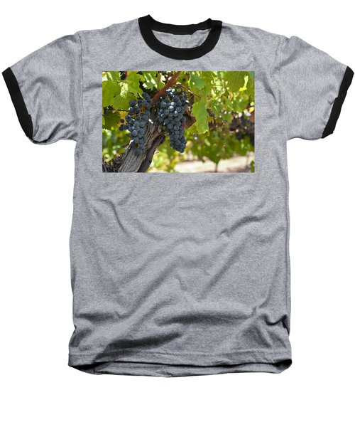 Baseball T-Shirt featuring the photograph Red Vines by Ulrich Schade
