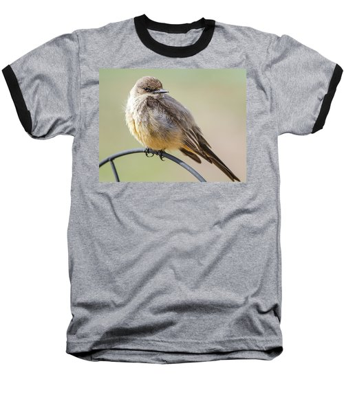Say's Phoebe Baseball T-Shirt