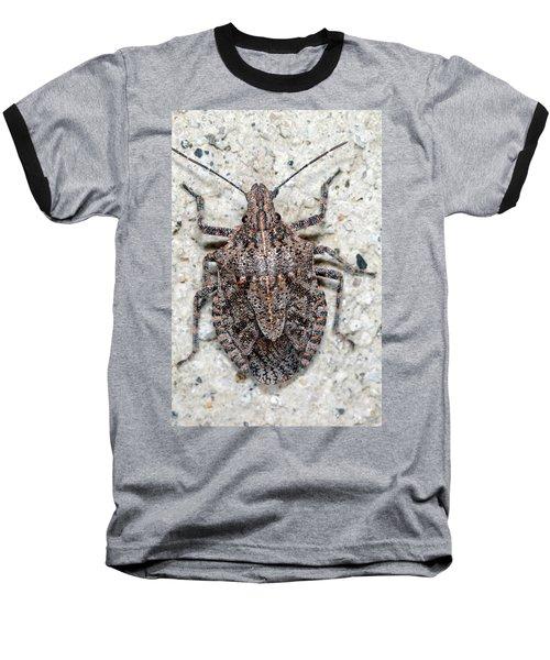Stink Bug Baseball T-Shirt