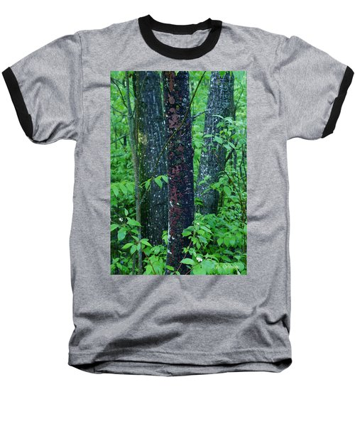 3 Trees Baseball T-Shirt