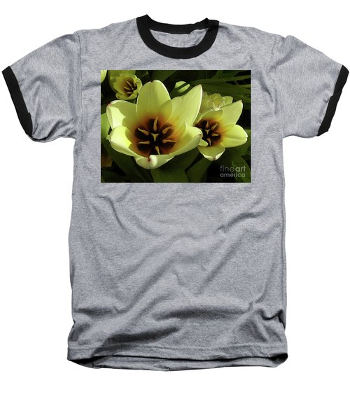Tulip Lights #4 Baseball T-Shirt
