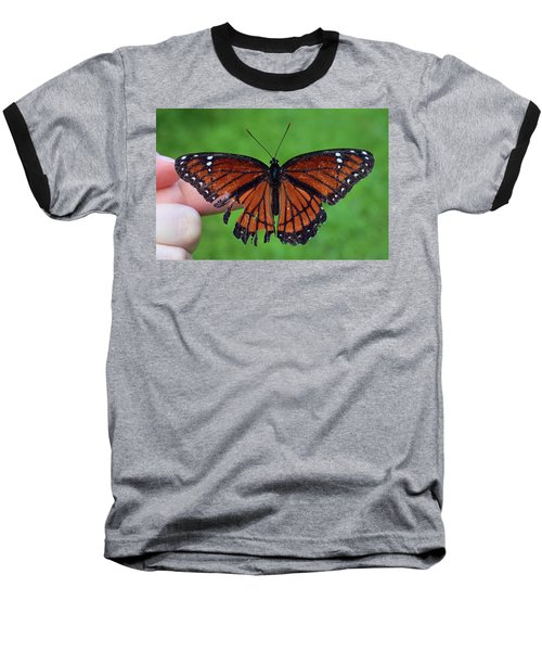 Viceroy Butterfly Baseball T-Shirt