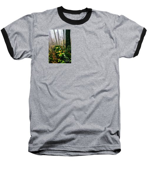 Autumn Monongahela National Forest Baseball T-Shirt by Thomas R Fletcher
