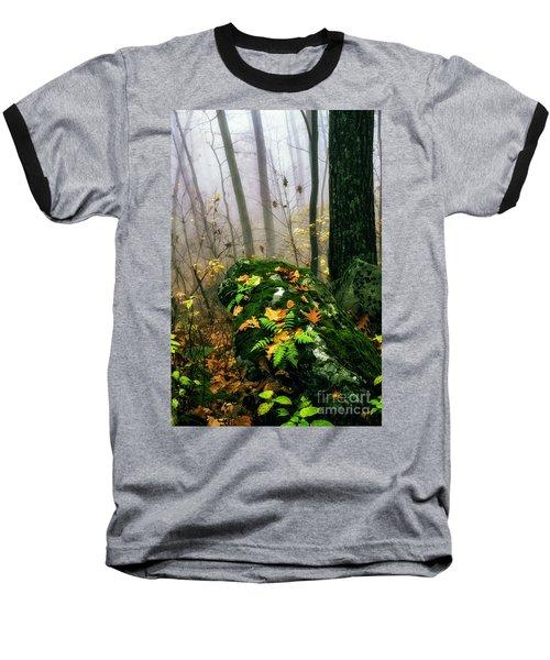Autumn Monongahela National Forest Baseball T-Shirt
