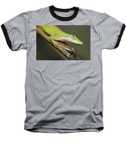Anole Baseball T-Shirt