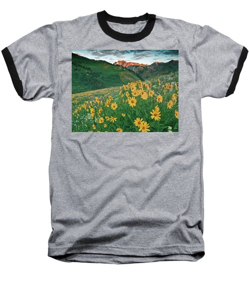 Albion Basin Wildflowers Baseball T-Shirt by Utah Images