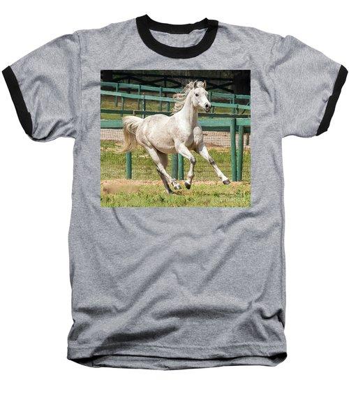 Arabian Horse Running Baseball T-Shirt