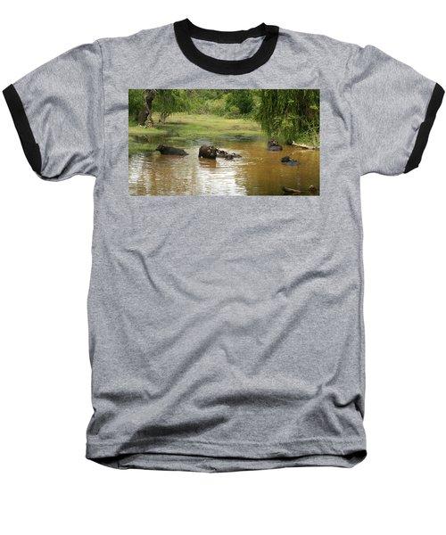 Buffalos Baseball T-Shirt
