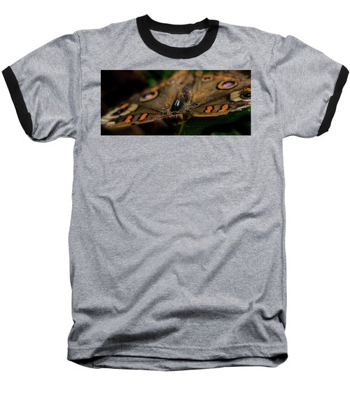Baseball T-Shirt featuring the photograph Butterfly by Jay Stockhaus