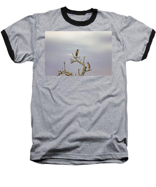 Green Heron Baseball T-Shirt by Peter Lakomy