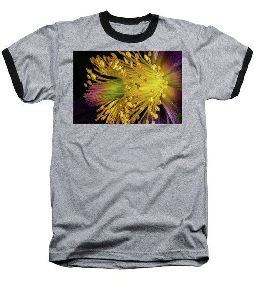 Purple And Yellow Baseball T-Shirt