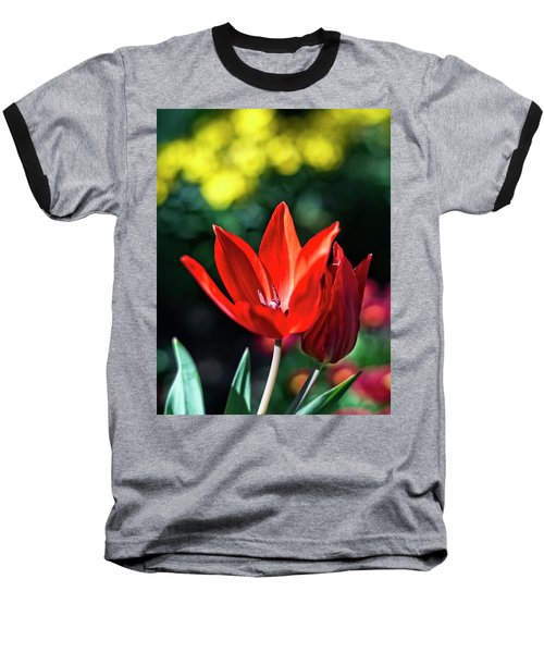 Spring Garden Baseball T-Shirt by Miguel Winterpacht
