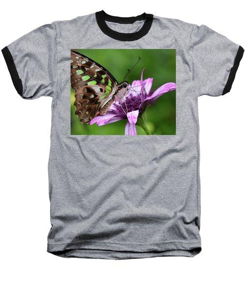Tailed Jay Baseball T-Shirt