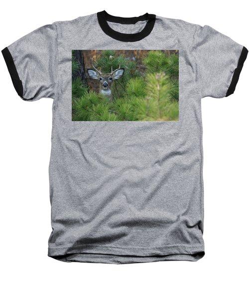White Tailed Deer Calverton New York Baseball T-Shirt