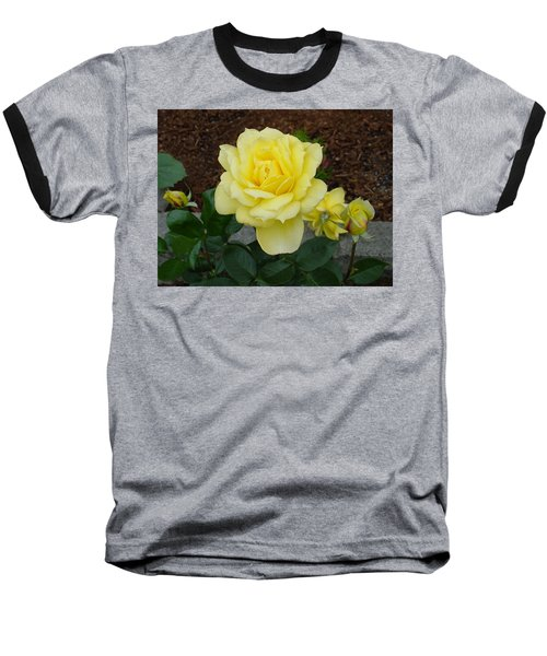 4 Yellow Roses Baseball T-Shirt