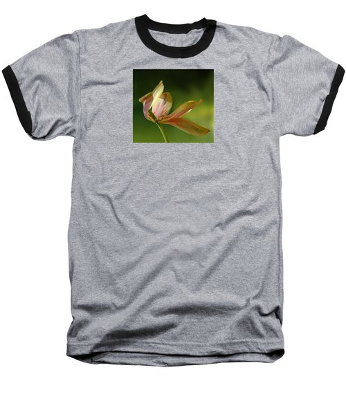 4188 Baseball T-Shirt by Peter Holme III