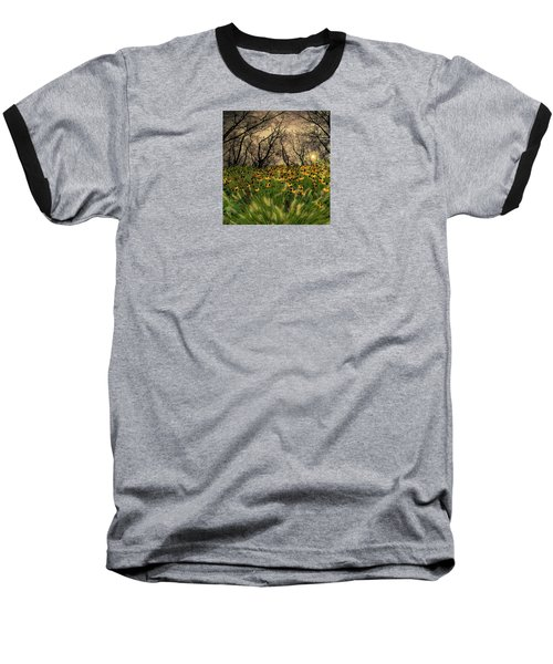 4209 Baseball T-Shirt by Peter Holme III