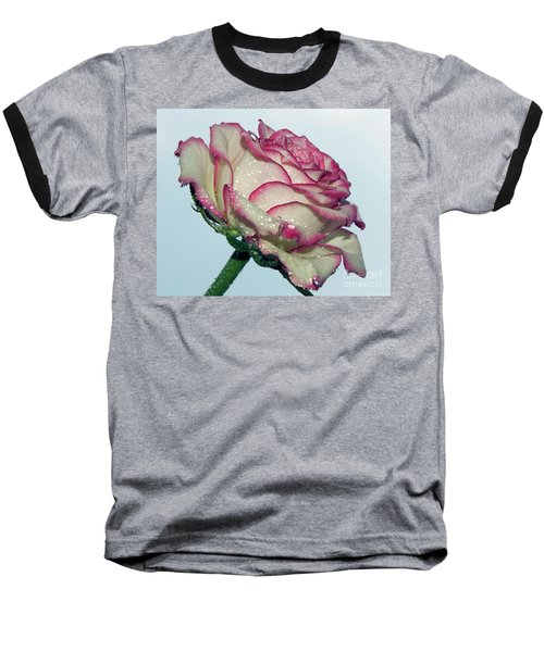 Beautiful Rose Baseball T-Shirt by Elvira Ladocki